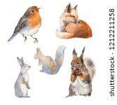 Watercolor Animal Set.  Perfec...