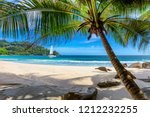 exotic sandy beach with palm... | Shutterstock . vector #1212232255