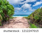 Path To The Tropical Beach Wit...