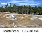 bacteria mat near surprise pool ... | Shutterstock . vector #1212301558