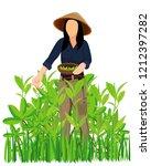 agriculturist harvest tea leave ... | Shutterstock .eps vector #1212397282