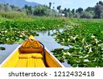 View of the lotus and water lily garden from a shikara (wooden boat) in Dal lake, Srinagar, Jammu & Kashmir, India. It is the second biggest lake in Srinagar and very a famous tourist destination.