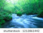 Water Spring In Forest   Aomori ...