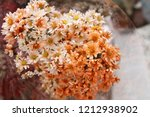 close up of tiny orange flowers.... | Shutterstock . vector #1212938902