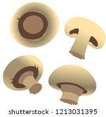 edible mushrooms vector | Shutterstock .eps vector #1213031395