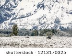 Two sport utility vehicles travel toward each other along Teton Park Road in Grand Teton National Park, Wyoming, USA, on a snowy day, with digital oil-painting effect, for themes of travel and tourism