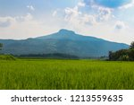 landscape view of green... | Shutterstock . vector #1213559635