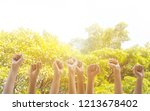 group of hand raise up many... | Shutterstock . vector #1213678402