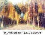glass wet autumn background ... | Shutterstock . vector #1213685905