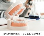 dentist appointment  dentistry... | Shutterstock . vector #1213773955