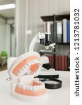 dentist appointment  dentistry... | Shutterstock . vector #1213781032