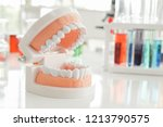 dentist appointment  dentistry... | Shutterstock . vector #1213790575