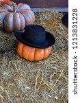 red pumpkin alone in the hay in ... | Shutterstock . vector #1213831228