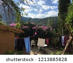 Drying Clothes In A Backyard...
