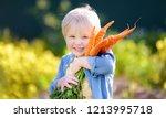 cute little boy holding a bunch ... | Shutterstock . vector #1213995718