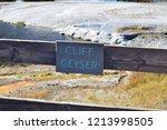cliff geyser erupts  in upper... | Shutterstock . vector #1213998505