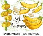 ripe cluster banana peeled... | Shutterstock .eps vector #1214024932