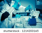 the scientists injected... | Shutterstock . vector #1214203165