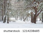 winter. frosty nature. snowy... | Shutterstock . vector #1214238685