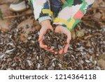hands holding sea shells....   Shutterstock . vector #1214364118