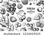 wild berry drawing. hand drawn... | Shutterstock . vector #1214419315
