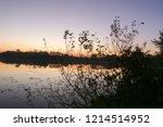 summer landscape pink and... | Shutterstock . vector #1214514952