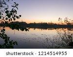 summer landscape pink and... | Shutterstock . vector #1214514955