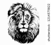 lion head isolated white... | Shutterstock .eps vector #1214575822