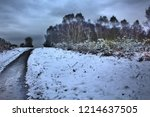 """the beast from the east"" snow... 