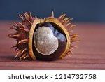 Ripe Horse Chestnuts In Fall A...