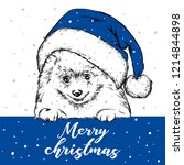 funny dog in christmas hat.... | Shutterstock .eps vector #1214844898