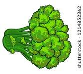 eco broccoli icon. cartoon of... | Shutterstock .eps vector #1214852362