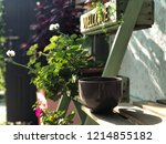 close up big tea dark brown mug ... | Shutterstock . vector #1214855182