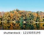 autumn forest trees. nature...   Shutterstock . vector #1215055195