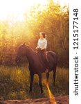 rider on a horse in the woods... | Shutterstock . vector #1215177148