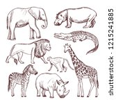 different animals of savana and ... | Shutterstock . vector #1215241885