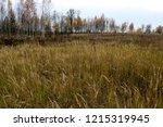 autumn landscape. dark clouds... | Shutterstock . vector #1215319945
