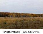 autumn landscape. dark clouds... | Shutterstock . vector #1215319948