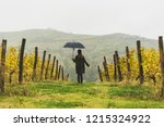 girl with a hat and umbrella... | Shutterstock . vector #1215324922