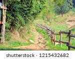 wooden palisade along nature... | Shutterstock . vector #1215432682