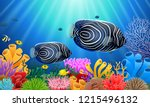 angelfish in the sea surrounded ... | Shutterstock . vector #1215496132