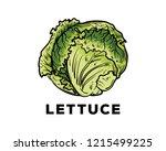 hand drawing vector fresh green ... | Shutterstock .eps vector #1215499225