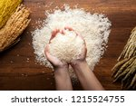 Small photo of Top view of jasmine rice holding in hands on dark wooden table with rice plants, ear of rices with jasmine rice ,rice scatter on the floor.