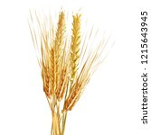 yellow ripe spikelets and... | Shutterstock .eps vector #1215643945