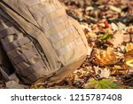 close up detail of the exterior ... | Shutterstock . vector #1215787408