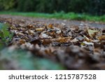 leaves of ground next to park...   Shutterstock . vector #1215787528