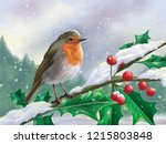European Robin Perched On A...