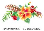 bouquet of tropical flowers of... | Shutterstock . vector #1215899302