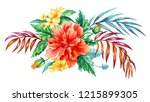 bouquet of tropical flowers of... | Shutterstock . vector #1215899305