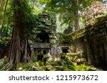 ta prohm temple ruins in...   Shutterstock . vector #1215973672